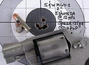 swm64-2snubspeer12ydtarg1