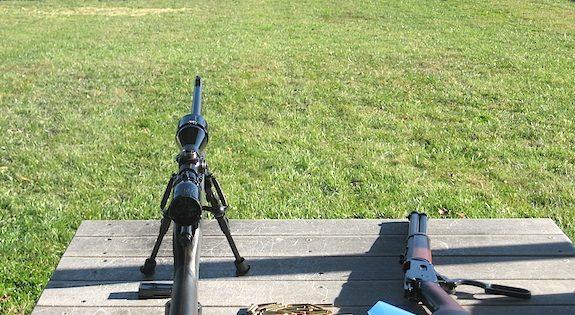 Marlin 25MN Updated 100 Yard Range Report
