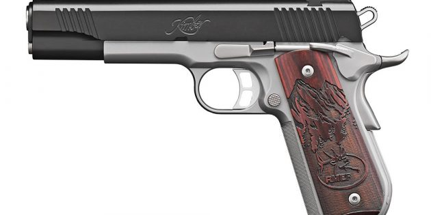 Kimber Camp Guard 10MM — Table Top Review